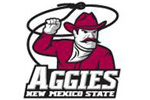 New Mexico State University | E-Stores by Zome