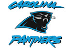Carolina Panthers | E-Stores by Zome
