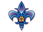 New Orleans Hornets | E-Stores by Zome