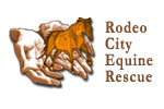 Rodeo City Equine Rescue | E-Stores by Zome